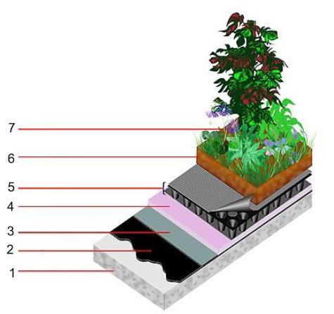 схема устройства зеленой